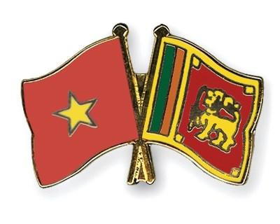 Third Vietnam-Sri Lanka political consultation held in Colombo hinh anh 1