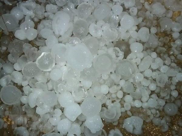 Hailstones rain down on mountainous Lao Cai province hinh anh 1