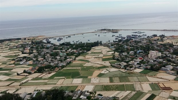 Ly Son Island to have new night market hinh anh 1