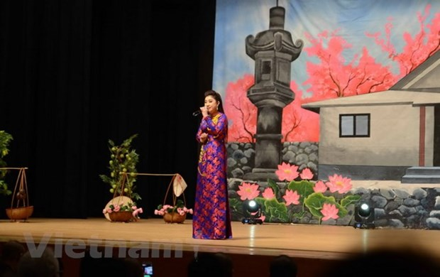 Art performance raises funds for Vietnamese pagoda in Japan hinh anh 1