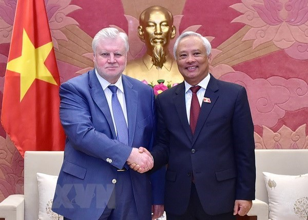 Vietnam treasures ties with Russia: Vice NA Chairman hinh anh 1
