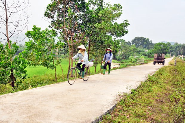 Tuyen Quang: over 116 billion VND allocated to ethnic minorities hinh anh 1