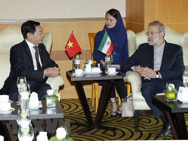Top Iranian legislator hails friendship association's contributions hinh anh 1