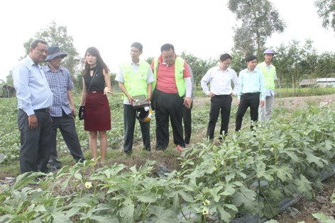 Hau Giang, RoK foundation work to apply high tech in agriculture hinh anh 1