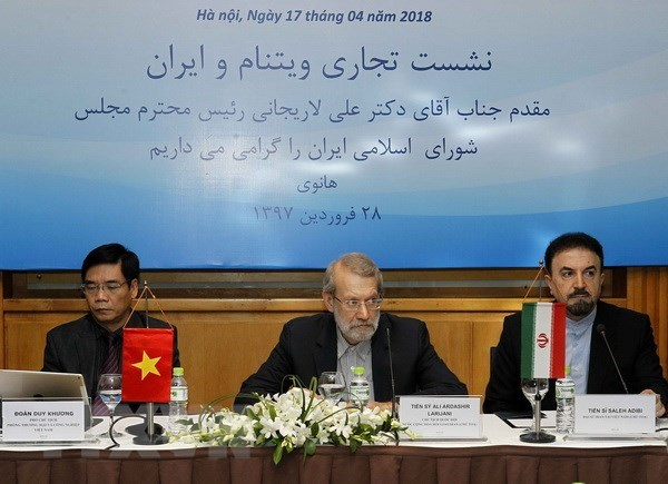 Vietnam, Iran hold huge potential for cooperation hinh anh 1