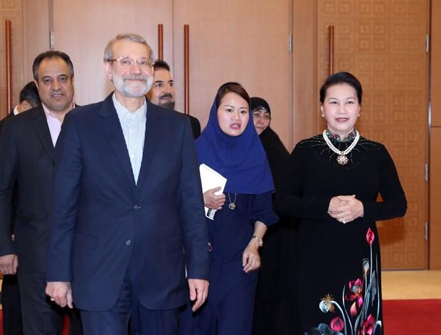 Iranian Speaker of Parliament wraps up Vietnam visit hinh anh 1