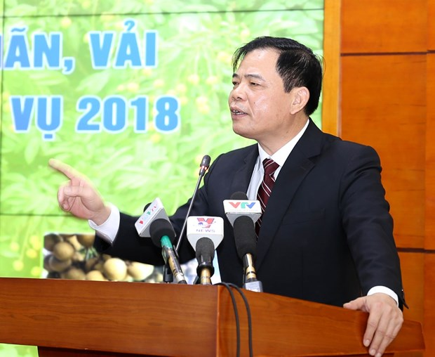 Northern provinces propose promoting litchi, longan exports hinh anh 1