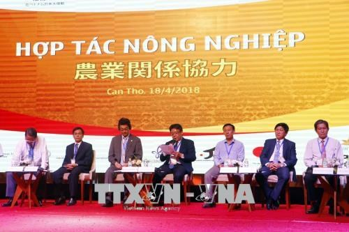 Can Tho city woos Japanese investors hinh anh 1