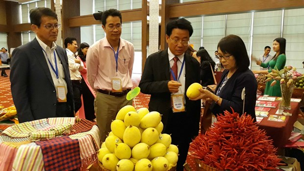 Ambassador affirms Japanese investors' interest in Mekong Delta hinh anh 1