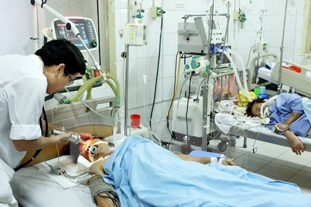 Vietnam works to reduce mortality among mothers, newborns hinh anh 1
