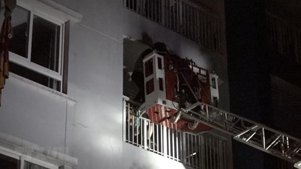 Carina Plaza's investor arrested for fire safety violations hinh anh 1