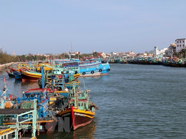 Ca Mau: boats violating foreign waters to be banned from operating hinh anh 1