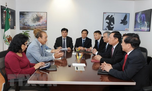 Vietnam, Mexico share experience in external information service hinh anh 1