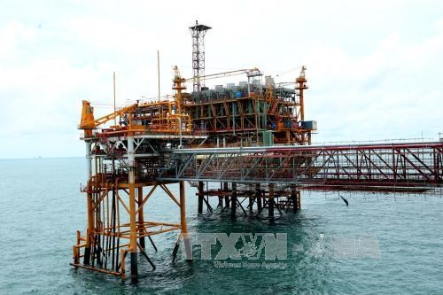 PetroVietnam to continue with large-scale divestment hinh anh 1