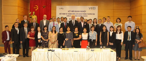 Asian-Pacific, Vietnamese businesses explore potential hinh anh 1