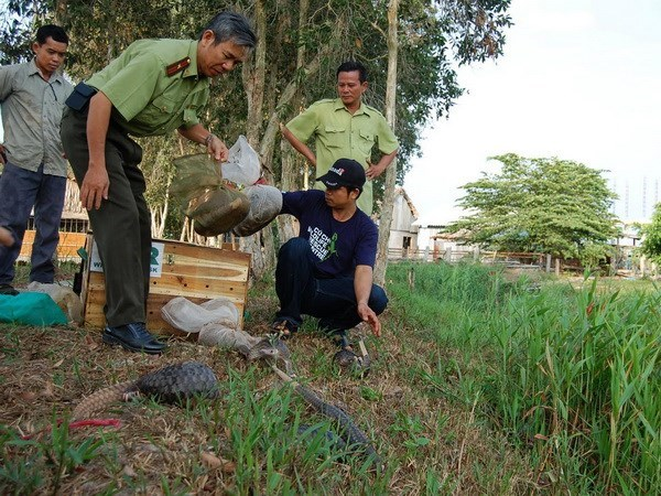 Measures taken to preserve biodiversity in U Minh Thuong National Park hinh anh 1
