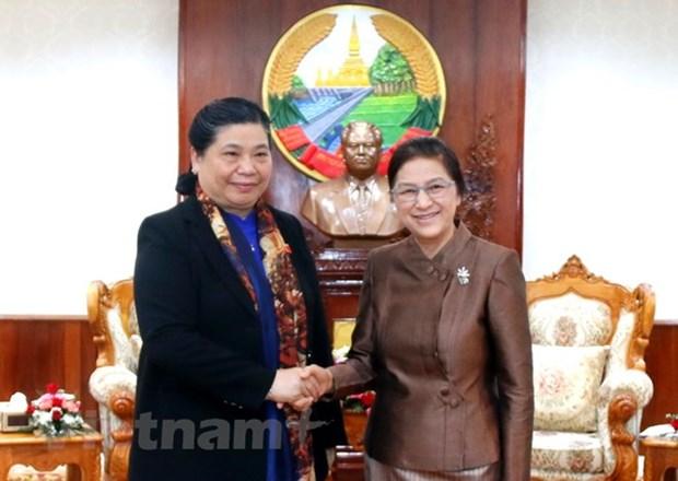 Vietnam, Laos beef up legislative ties hinh anh 1