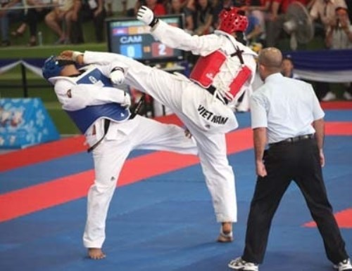 Vietnamese earn four golds at int'l taekwondo champs hinh anh 1