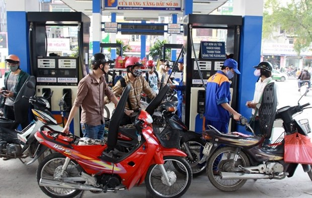 Petrol prices remain stable, oil prices slightly rise hinh anh 1