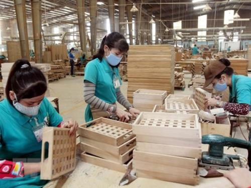 Vietnam accounts for 6 pct of world's timber, wooden furniture market hinh anh 1