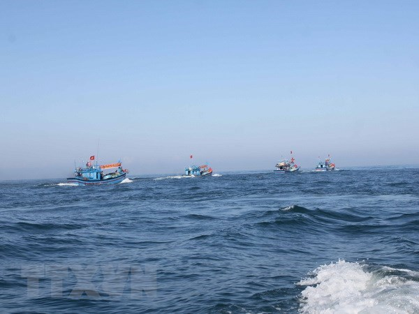 China's fishing ban in Vietnamese waters valueless: MARD hinh anh 1