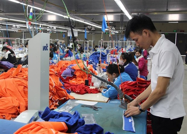 VN firms team up with Asia-Pacific partners for stronger growth hinh anh 1