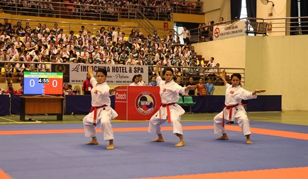 Vietnam wins 29 golds at regional karate tourney hinh anh 1