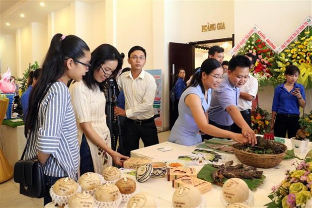 Ben Tre hosts Mekong startup festival for young people hinh anh 1
