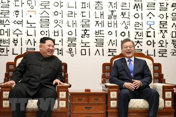 Vietnam lauds efforts of RoK, DPRK in Inter-Korean Summit organisation hinh anh 1
