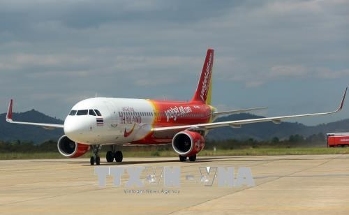 Seven flights cancelled due to bird strike during holiday hinh anh 1