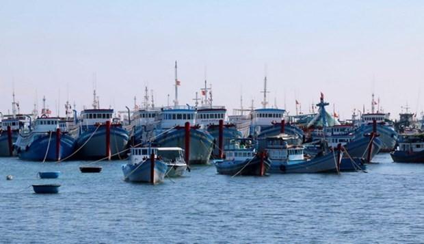 Phu Yen fishermen urged to maintain fishing activities hinh anh 1