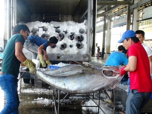 EC delegation to inspect IUU fishing in Vietnam hinh anh 1