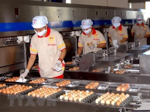 Over 14,500 new firms established in April hinh anh 1