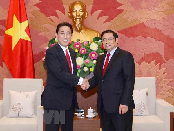 Party official: CPV-LDP cooperation crucial to Vietnam-Japan ties hinh anh 1