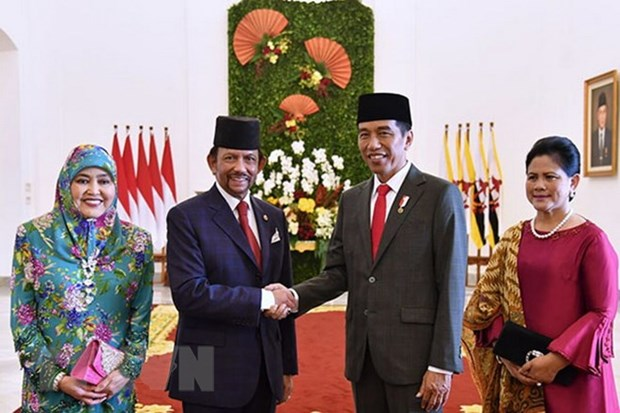 Indonesia, Brunei boost multi-faceted cooperation hinh anh 1