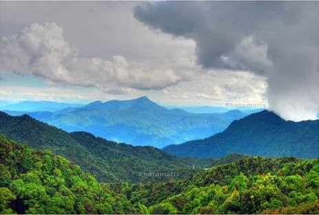 National Park draws visitors to Thua Thien – Hue hinh anh 1