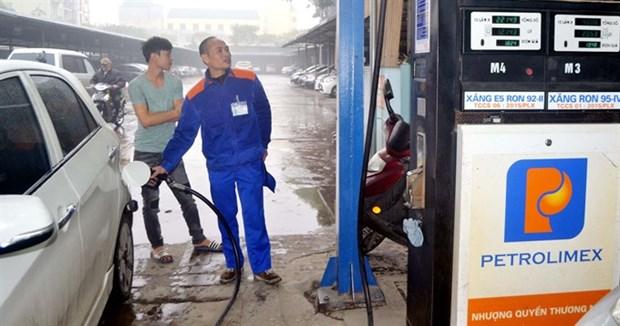 Petrol traders urged to sell more bio-fuels hinh anh 1
