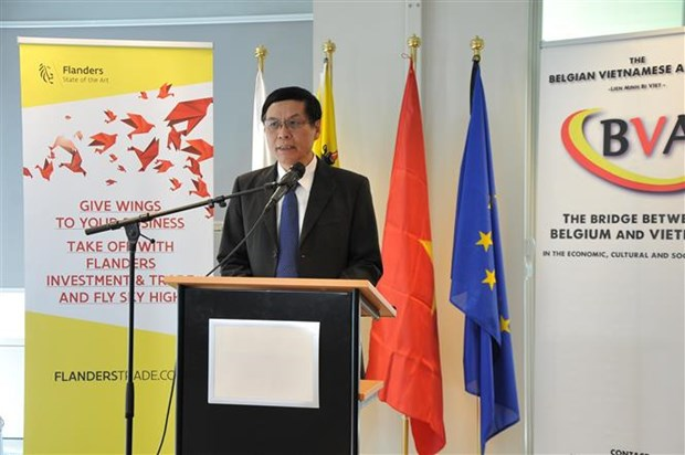 Belgian businesses seek cooperation opportunities in Vietnam hinh anh 1