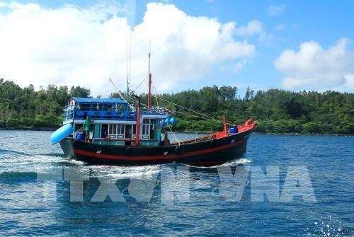 Fishing output gains 2.7 percent in Jan-Apr hinh anh 1