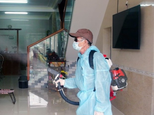 HCM City calls for locals' involvement in battle against dengue fever hinh anh 1