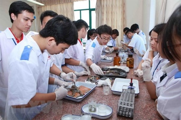 74 percent of high school candidates apply to universities hinh anh 1