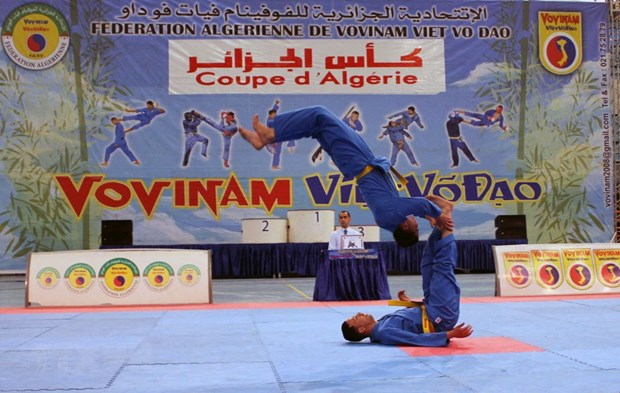 First Vietnamese martial art Grand Prix event in Algeria hinh anh 1