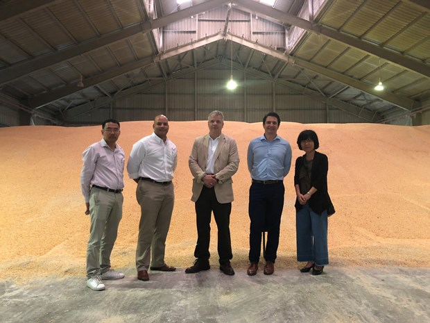 First direct shipment of US corn arrives in Vietnam hinh anh 1