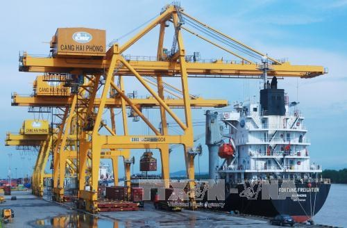 Hai Phong Int'l Container Terminal to welcome first ship hinh anh 1