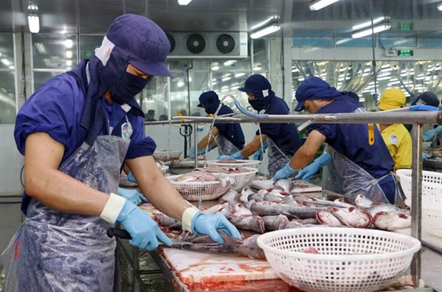 Vietnamese exporters must self-verify origin from 2019 hinh anh 1