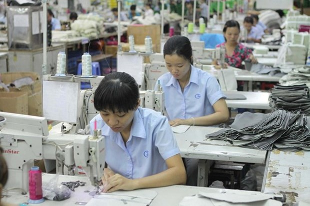 Vitas: Vietnam's potential of exporting apparel to Australia is huge hinh anh 1