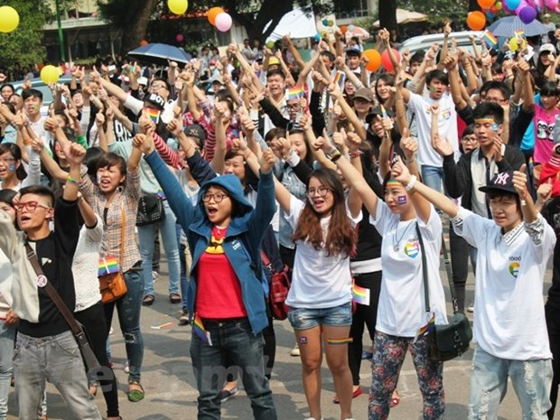LGBT community in Vietnam's path to recognition hinh anh 3