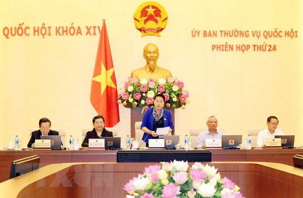 NA Standing Committee debates Government supplementary report hinh anh 1