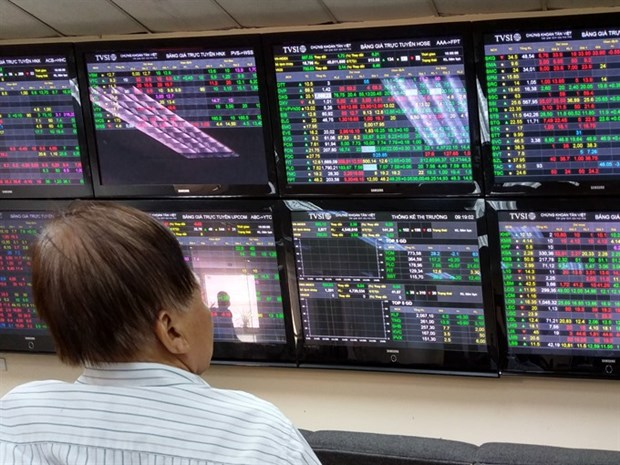 Large-cap, oil & gas stocks boost VN-Index hinh anh 1