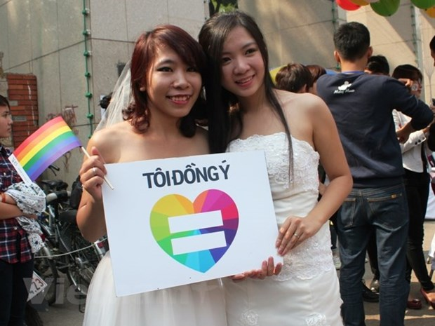 Rainbow flag movements make inroads in Vietnam hinh anh 2
